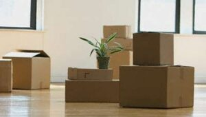 Packers and Movers Sector 7 Gurgaon