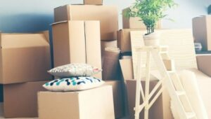Packers and Movers Sector 8 Gurgaon